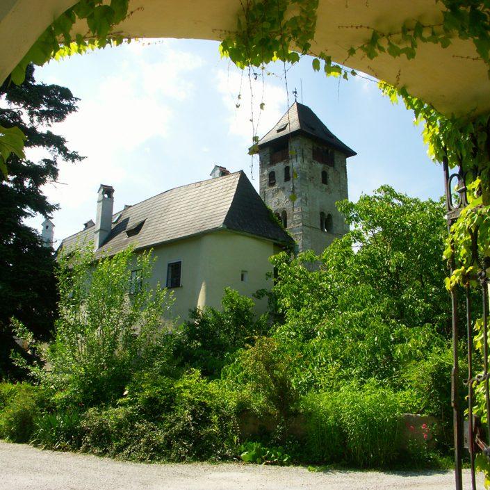 Detailansicht der Burg Oberranna im Grünen